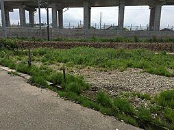 石川県白山市成町 土地