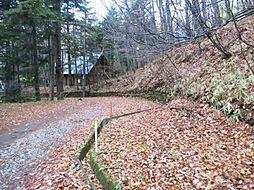 軽井沢あかしやの森 別荘地
