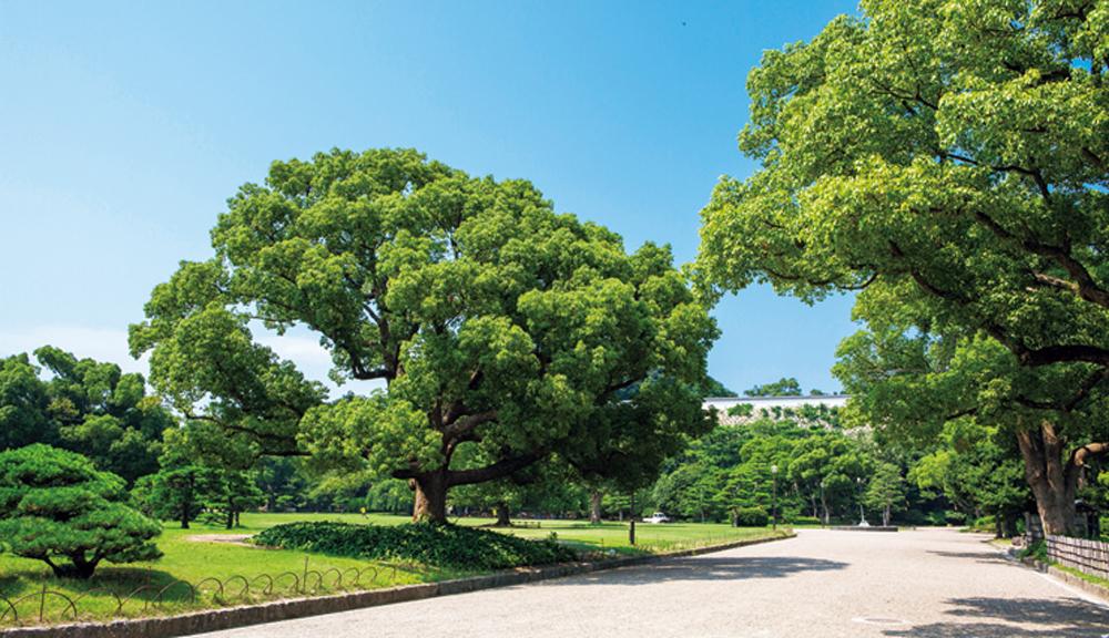 明石公園 約720m(徒歩9分)