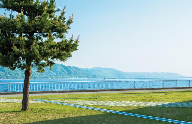 大蔵海岸公園 約900m(徒歩12分)