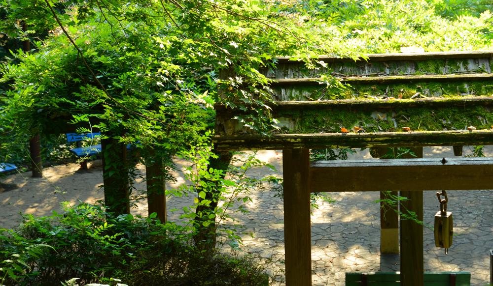 鵜の木松山公園 約320m(徒歩4分)