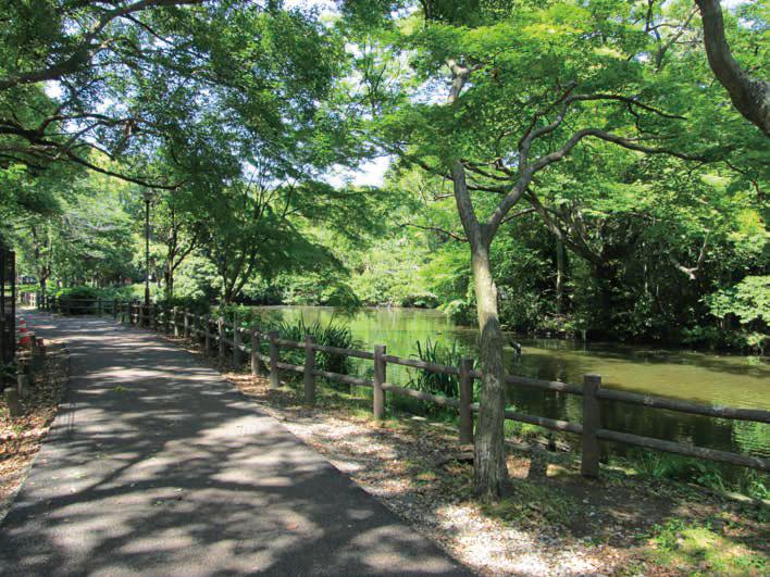 和田堀公園 約780m(徒歩10分)