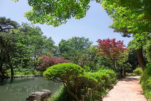 有栖川宮記念公園 約1,100m(徒歩14分)