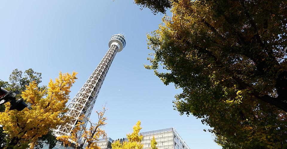 横浜マリンタワー 約160m(徒歩2分)