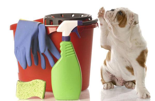 大掃除の攻略法
