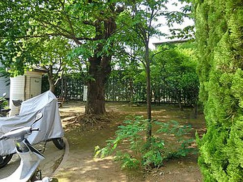 マンション(建物全部)-大田区久が原6丁目 つきやま公園