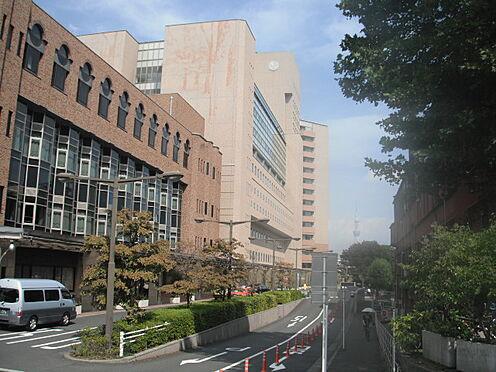 区分マンション-文京区本郷4丁目 【総合病院】東京大学医学部付属病院まで1344m