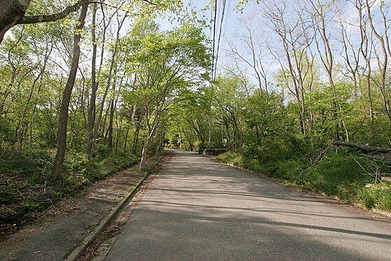 中古一戸建て-北佐久郡軽井沢町大字長倉 別荘地内の道路は舗装されてます。道路幅も十分な広さがあり不慣れな山道でも安心です。