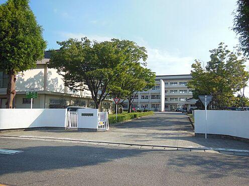 新築一戸建て-西尾市今川町一本松 西尾中学校 約650m(徒歩約9分)