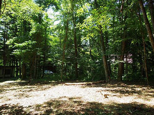 土地-北佐久郡軽井沢町大字長倉 両面道路で日当たり良好。約116坪の平坦地。