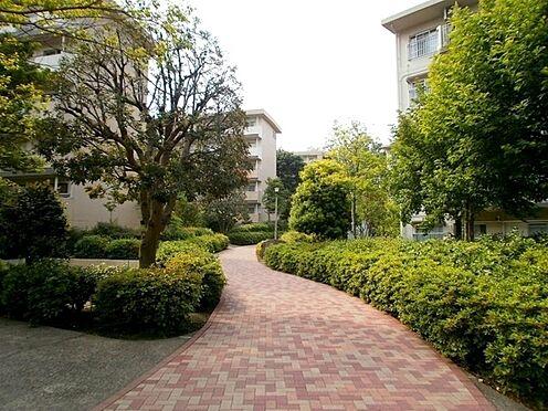 中古マンション-横浜市緑区霧が丘6丁目 敷地内は遊歩道があり安心