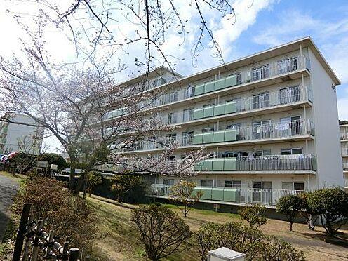 区分マンション-横須賀市グリーンハイツ 外観