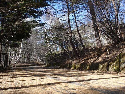 土地-北佐久郡軽井沢町大字長倉 安心幅の6m南側接道。紅葉や樹氷も素敵ですが夏時期 緑のアーチは圧巻です。ぜひお確かめ下さい。