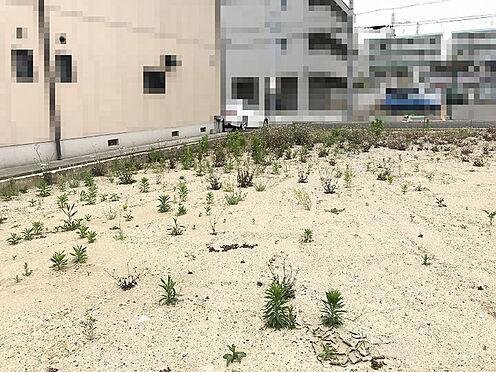 土地-神戸市垂水区坂上2丁目 外観