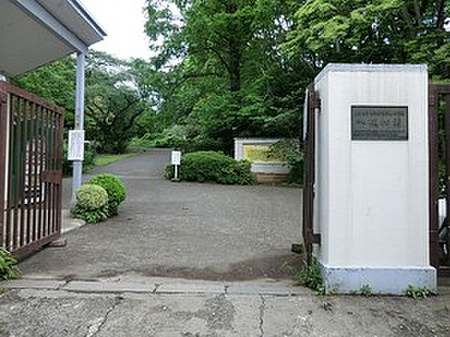 マンション(建物一部)-文京区白山5丁目 周辺環境:小石川植物園