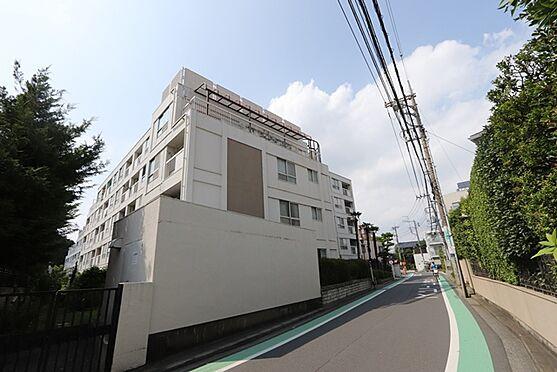 マンション(建物一部)-狛江市岩戸南1丁目 サブエントランス側