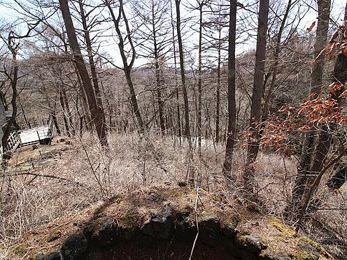 土地-北佐久郡軽井沢町大字軽井沢旧軽井沢 道路からの高低差はありますが緩い傾斜です。