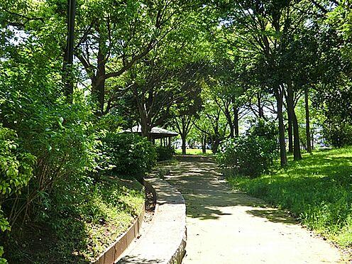 店舗・事務所・その他-横浜市保土ケ谷区仏向町 仏向行坐谷公園 約930m