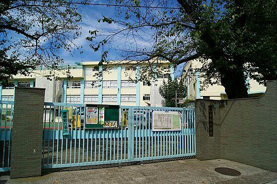 店舗事務所(建物全部)-豊島区目白2丁目 小学校豊島区立高南小学校まで455m