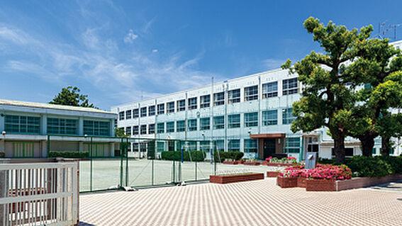 新築一戸建て-名古屋市昭和区折戸町3丁目 川名中学校 1500m 徒歩約19分