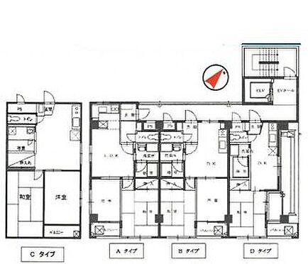 マンション(建物全部)-戸田市美女木3丁目 間取り