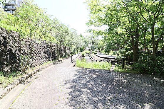 中古マンション-八王子市別所2丁目 長池公園姿池に延びるせせらぎ緑道です。