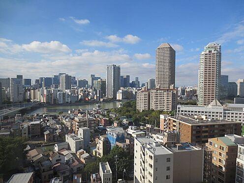中古マンション-中央区佃2丁目 リビングからの眺望、隅田川・住吉神社を望む