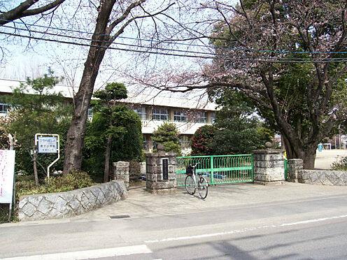 土地-東松山市大字石橋 【小学校】唐子小学校まで約700m