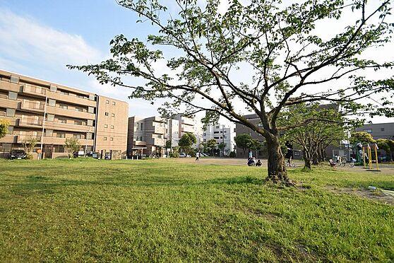 マンション(建物全部)-市川市伊勢宿 緑豊かな子供たちが集まる公園。