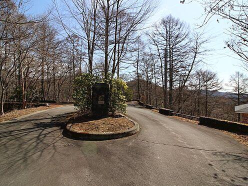 土地-北佐久郡軽井沢町大字軽井沢旧軽井沢 前面道路は幅員が広く、舗装済みですので安心ですね。