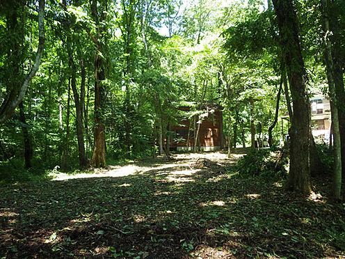 土地-北佐久郡軽井沢町大字長倉 閑静な別荘地でリゾート気分を満喫しませんか。