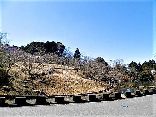 中古一戸建て-田方郡函南町平井南箱根ダイヤランド 道路を挟んで反対側には、春には桜を愛でることのできるその名も「桜公園」がございます。