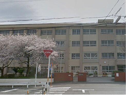 アパート-和歌山市野崎 【中学校】河北中学校まで767m