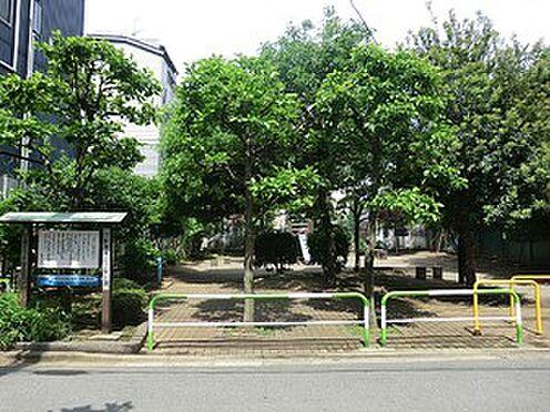 マンション(建物全部)-世田谷区上馬4丁目 三軒茶屋二丁目公園