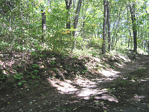 土地-北佐久郡軽井沢町大字長倉鶴溜 自然豊かな環境で気分もリフレッシュできます。