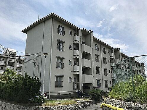 マンション(建物一部)-神戸市須磨区高尾台3丁目 豊かな自然に恵まれた住環境が魅力