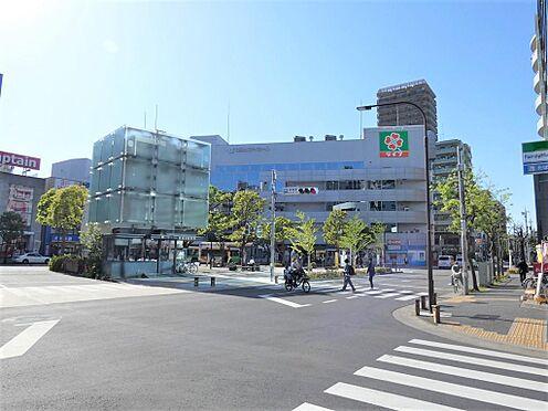 アパート-江戸川区篠崎町1丁目 篠崎駅