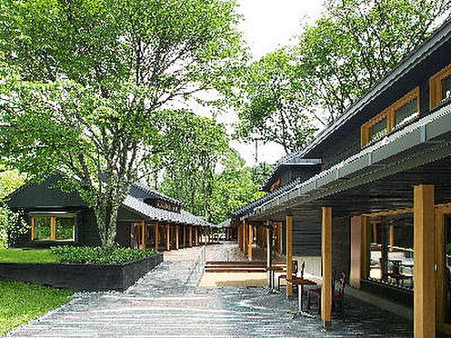 土地-北佐久郡軽井沢町大字軽井沢 人気の星野リゾート「ハルニレテラス」までも約1.6キロの距離です。