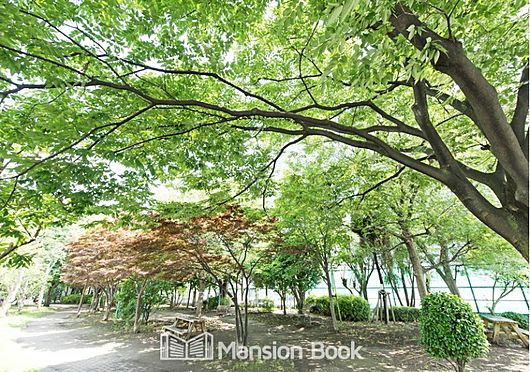 中古マンション-中央区晴海3丁目 豊海運動公園(672m)