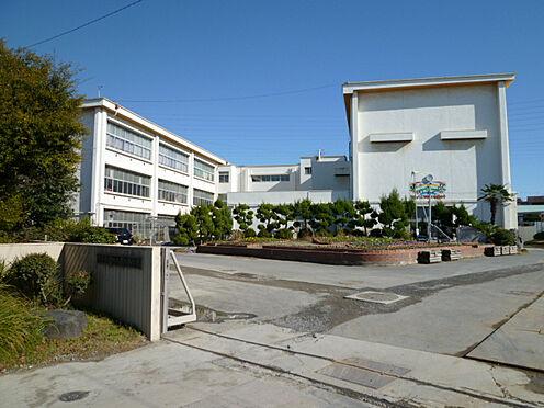 新築一戸建て-東海市加木屋町泡池 東海市加木屋南小学校まで240m