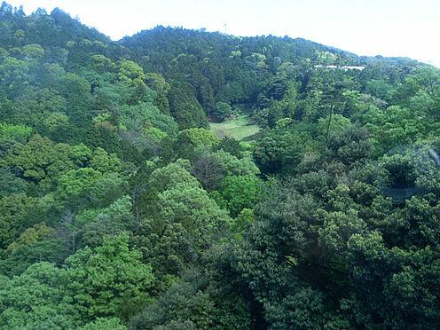 中古マンション-熱海市伊豆山 寝室からは裏山の緑が綺麗です。熱海ゴルフ場のグリーンも見えます。