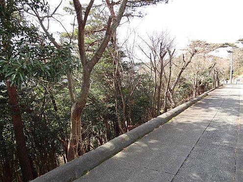 土地-熱海市上多賀 南下り斜面地となっております。今は樹木で覆われていますが、伊豆諸島や天城まで望むパノラマ眺望です。