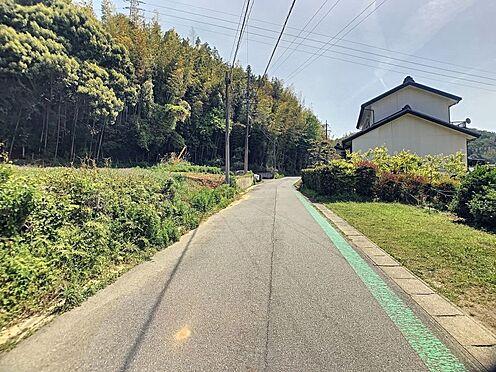 土地-額田郡幸田町大字深溝字仲馬乗 見通しの良い前面道路です!