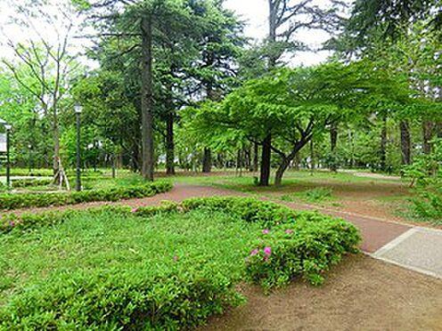 アパート-中野区江古田2丁目 江古田の森公園