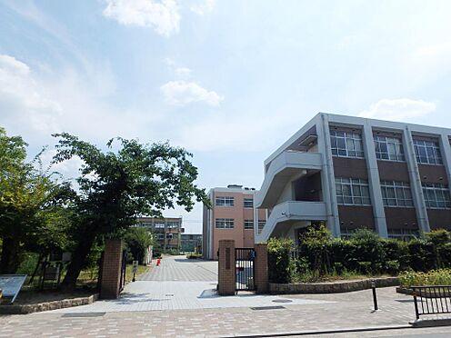 アパート-京都市伏見区深草大亀谷西寺町 藤森中学校 約1500m(徒歩約19分)
