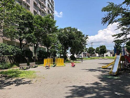 中古マンション-横浜市戸塚区深谷町 南側に隣接の公園風景