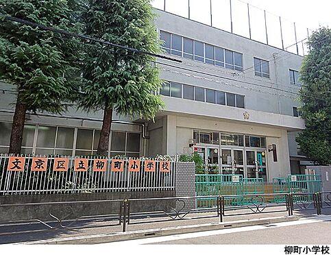 マンション(建物一部)-文京区小石川1丁目 柳町小学校