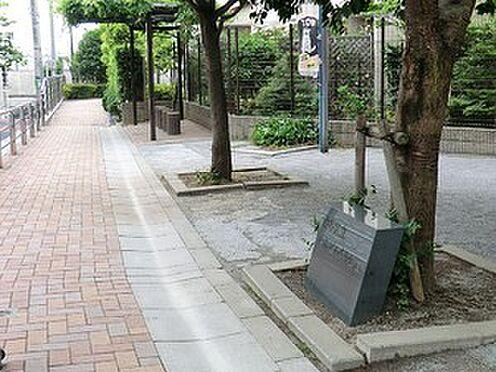 アパート-渋谷区西原3丁目 周辺環境:西原どんぐり公園
