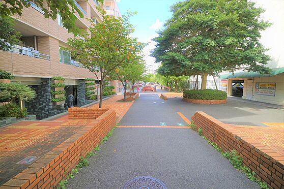 中古マンション-横浜市都筑区葛が谷 物件前緑道