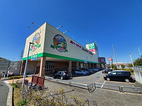 新築一戸建て-多摩市桜ヶ丘3丁目 サミットストア東寺方店(570m)